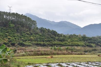 In der Provinz südlich von Yangxi