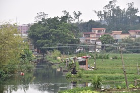 Zwischen Jiangmen und Heshan