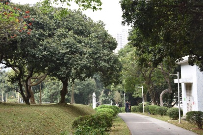 Park in Zhongshan