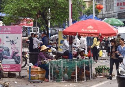 Hühnermarktstand an der Straße