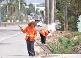 Pflege des Straßengrabens